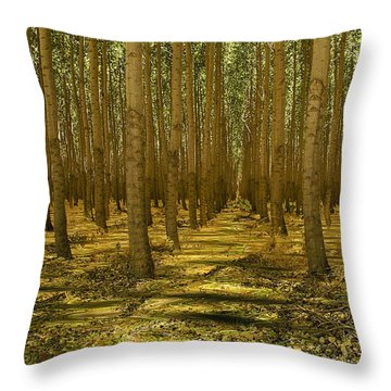 Just Add Water Throw Pillow by Jean Noren