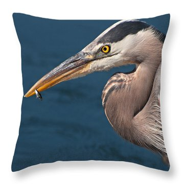 Just An Appetizer For A Great Blue Heron Throw Pillow by Kasandra Sproson