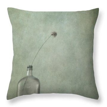 Just An Old Bottle And Its Cap Throw Pillow by Priska Wettstein
