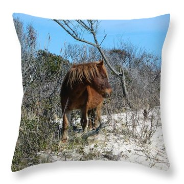 Throw Pillow featuring the photograph Just Another Day At The Beach by Photographic Arts And Design Studio