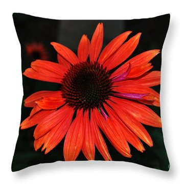 Just As Pretty Throw Pillow by Judy Wolinsky