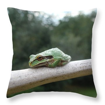 Just Chillin' Throw Pillow by Cheryl Hoyle