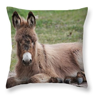 Just Chillin' Throw Pillow by Lorri Crossno