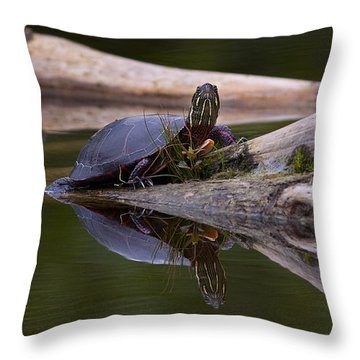 Just Chillin.. Throw Pillow