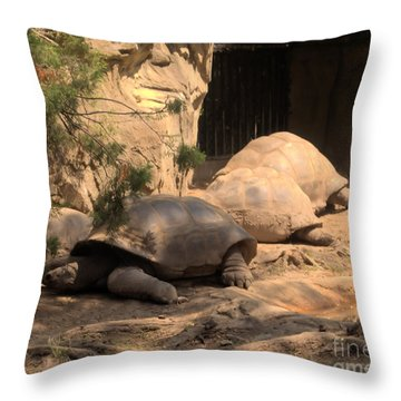 Just Chillin' Throw Pillow by Luther   Fine Art