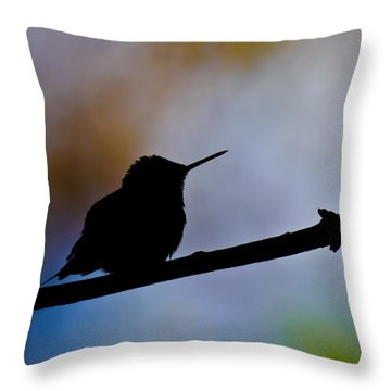 Throw Pillow featuring the photograph Just Chillin by Robert L Jackson