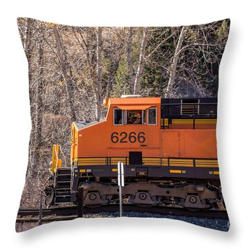 Throw Pillow featuring the photograph Just Clowning Around by Sue Smith