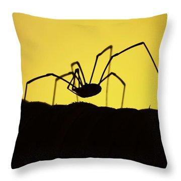 Just Creepy Throw Pillow