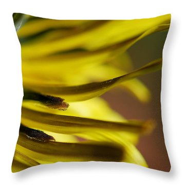 Just Dandy Throw Pillow by Wendy Wilton
