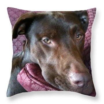 Just Five More Minutes Throw Pillow by Debbie Finley