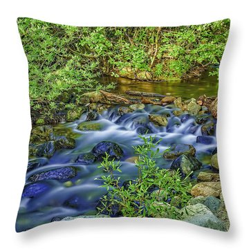 Just Go With The Flow-2 Throw Pillow