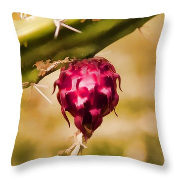 Just Haging Around Throw Pillow by Scott Campbell