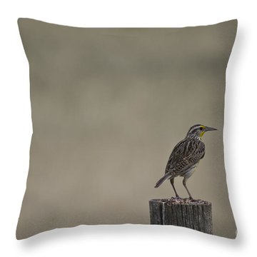 Western Meadowlark On A Fence Post Throw Pillow