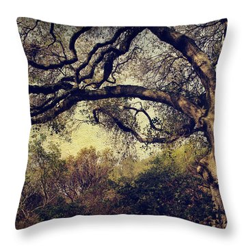 Just How It Ought To Be Throw Pillow by Laurie Search