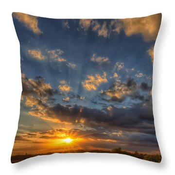 Just In Time Throw Pillow by Tim Stanley