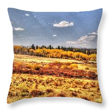 Just North Of Fairplay Colorado Throw Pillow