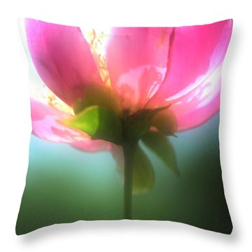 Just One Throw Pillow by Kathleen Struckle