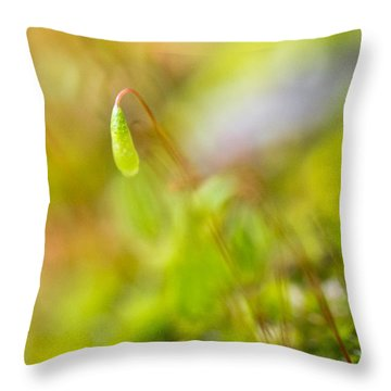 Just One Throw Pillow by Priya Ghose