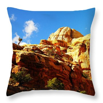 Just One Tree Throw Pillow by Jeff Swan