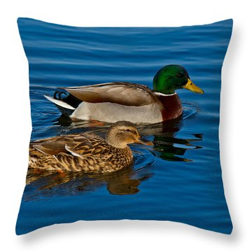 Just Swimming Along Throw Pillow by Doug Long