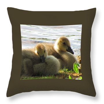 Just The Two Of Us Throw Pillow