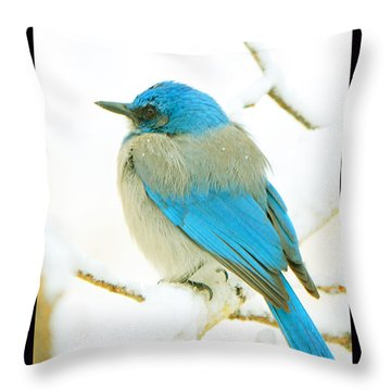 Just This Afternoon Throw Pillow by Susanne Still