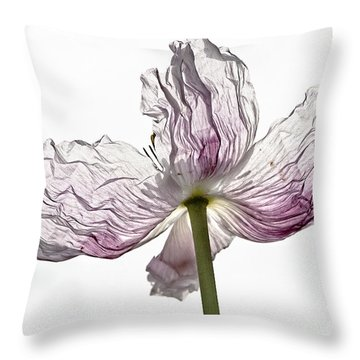Just Unfolding Throw Pillow