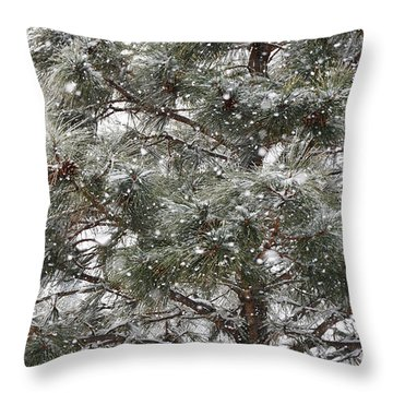 Throw Pillow featuring the photograph Just Winter by Diane Alexander