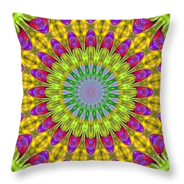 Kaeidoscope Shapes Throw Pillow by Suzanne Handel