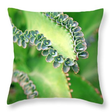 Kalanchoe Throw Pillow