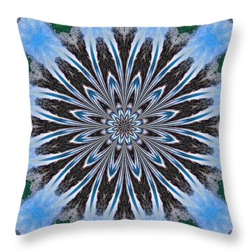 Kaleidoscope Flowing Throw Pillow