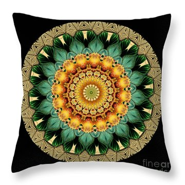 Kaleidoscope From Old Entomology Illustration Of Butterflies Throw Pillow by Amy Cicconi