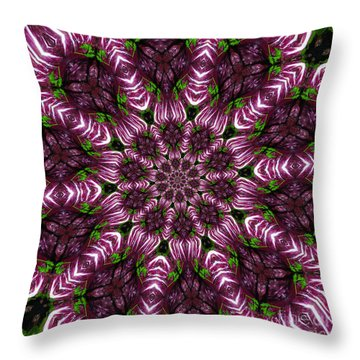 Kaleidoscope Raddichio Lettuce Throw Pillow by Amy Cicconi