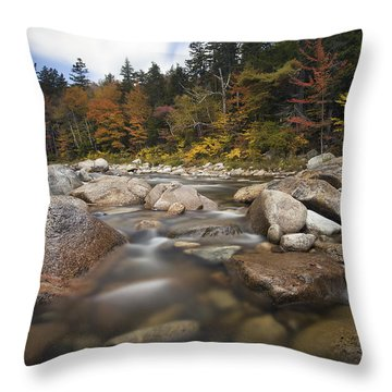 Kanc Colors Throw Pillow by Eric Gendron