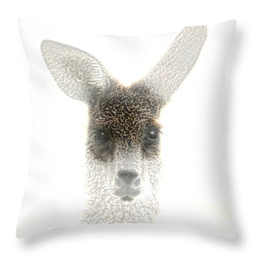 Throw Pillow featuring the photograph Kangaroo by Holly Kempe
