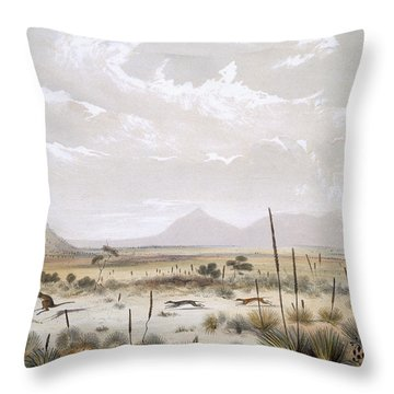 Kangaroo Hunting Near Port Lincoln Throw Pillow by George French Angas