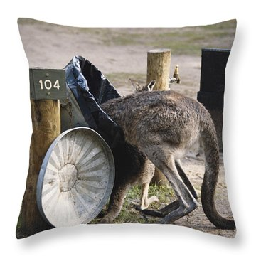 Kangaroo In Garbage Throw Pillow