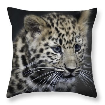 Kanika - Amur Leopard Portrait Throw Pillow