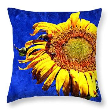 Kansas Throw Pillow by Andee Design