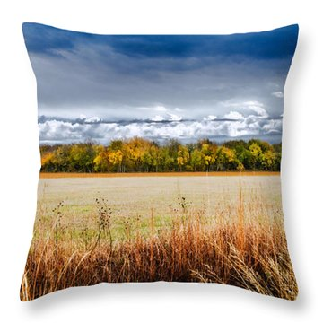 Kansas Fall Landscape Throw Pillow
