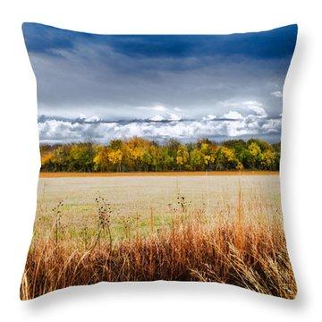 Kansas Fall Landscape Throw Pillow