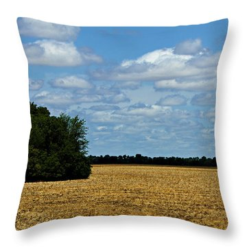 Kansas Fields Throw Pillow