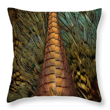 Kansas Reflection II Throw Pillow