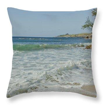 Kapalua Dt Fleming Beach Park Honokahua Bay Maui Hawaii Throw Pillow by Sharon Mau