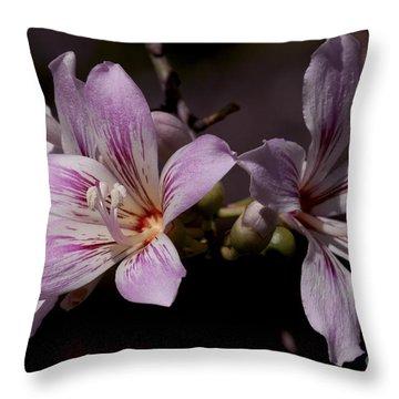 Kapok Bloom Throw Pillow