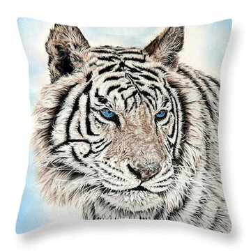 Kashmire Throw Pillow