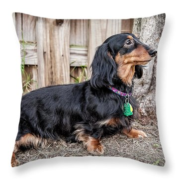 Katie Throw Pillow
