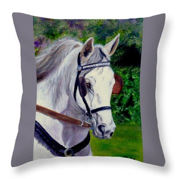 Katies Bailey Throw Pillow