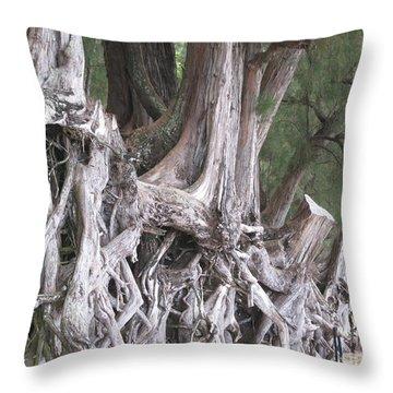 Kauai - Roots Throw Pillow