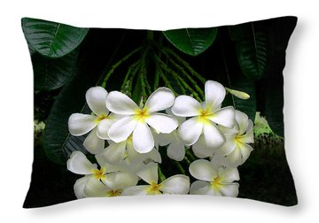 Kawela Plumeria Throw Pillow by James Temple